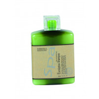 Szampon z olejkiem eukaliptusa (do włosów przetłuszczających się) 300 ml